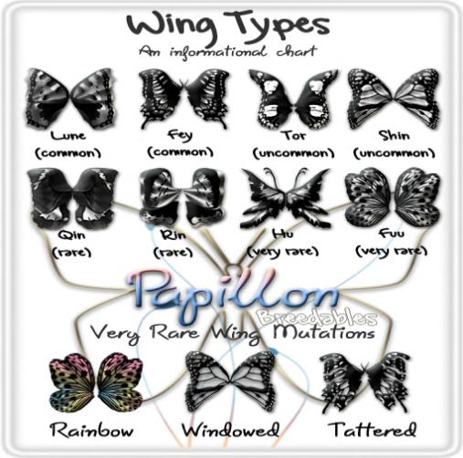 papillonwings.jpg